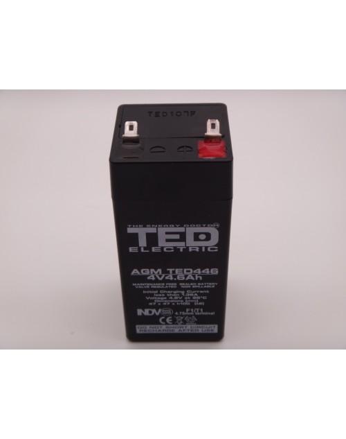 Acumulator lanterna 4V 4.9Ah AGM, VRLA Ted446