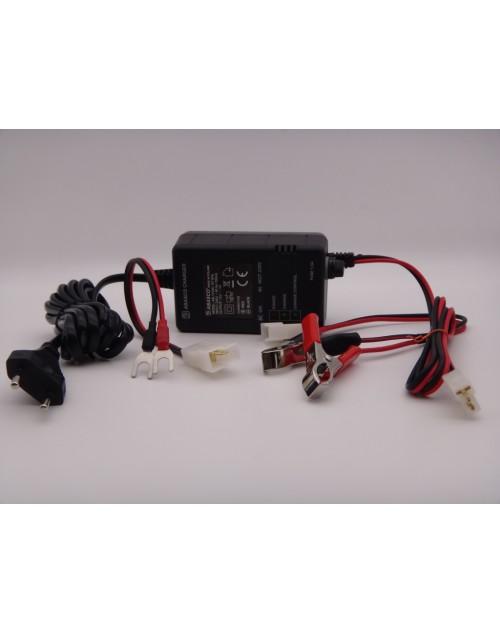 Incarcator 12V automat  pentru acumulatori plumb VRLA, GEL, AGM, Abasco Poland